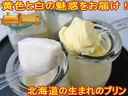 牧場ぷりん【駒ヶ岳牛乳】