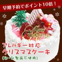 クリスマスケーキ  卵・乳製品不使用